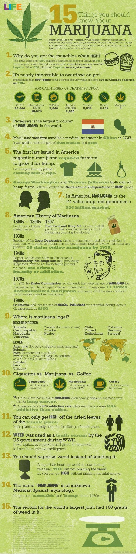 Infografik Fakten über Marihuana
